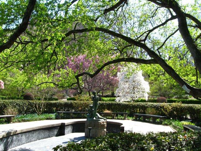 Spring in the Secret Garden