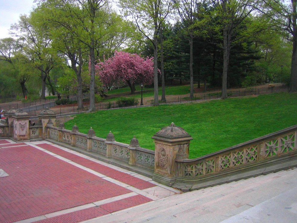 terrace park dating Major renovations planned for historic terrace park is due for a major overhaul right around the upper area has historic elements dating back to the.