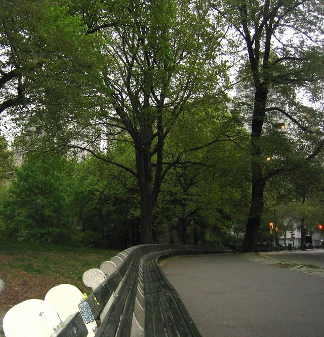 Very Long Bench, Central Park
