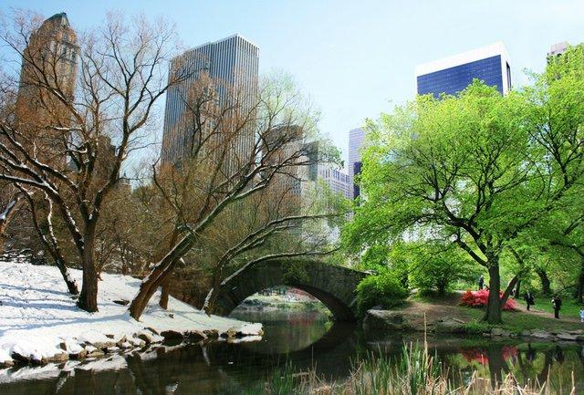 Gapstow Bridge season transform