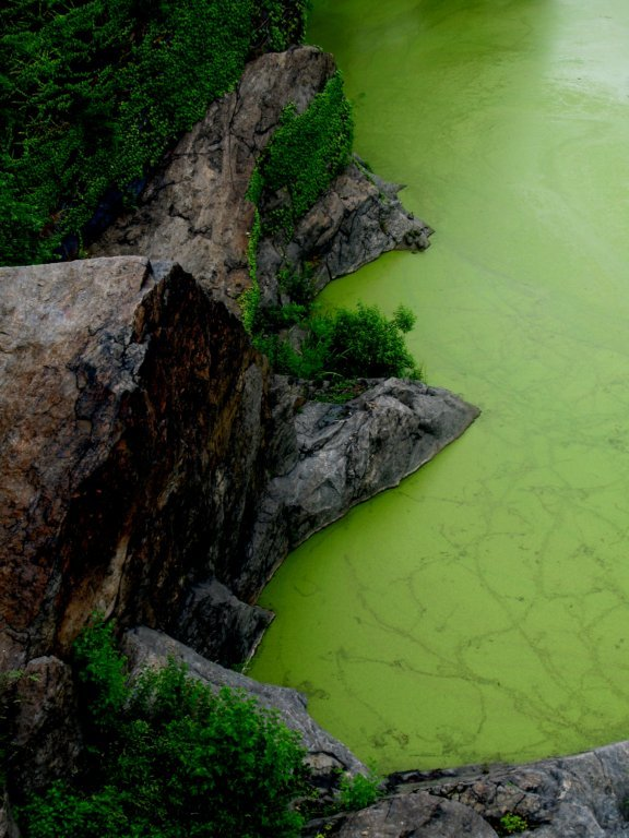 GREEN WATERS, GRAY MOUNTAINS