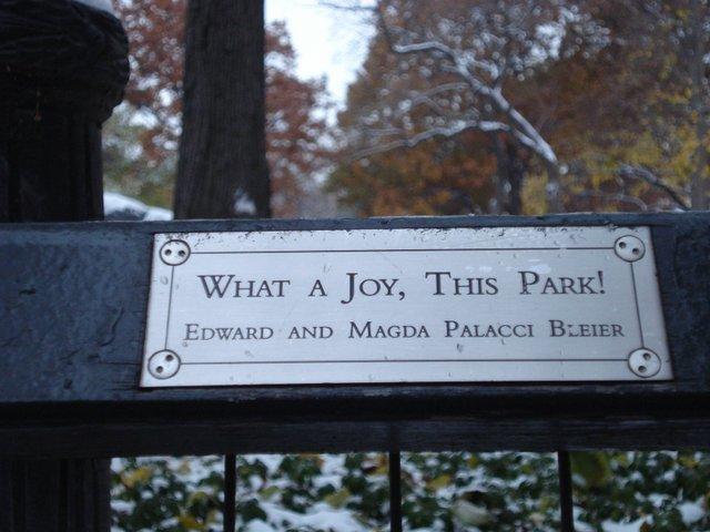 """""""What a Joy"""""""
