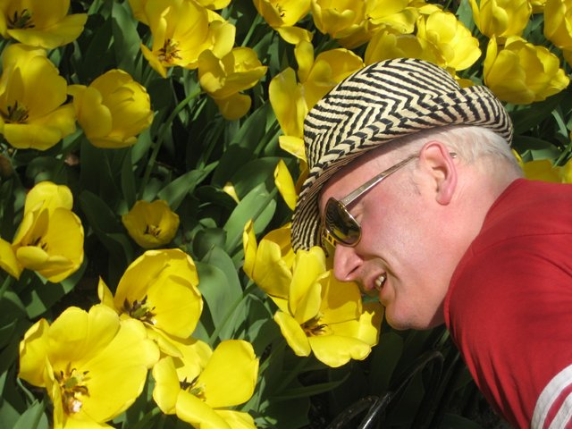 Joel nose tulips