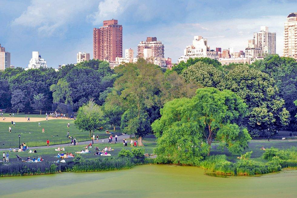Central Park from Belevedere Castle