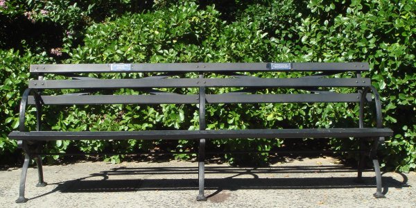 Photo Entry Central Park Bench