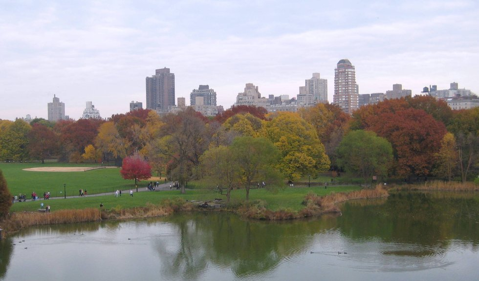 Eastern View in Fall