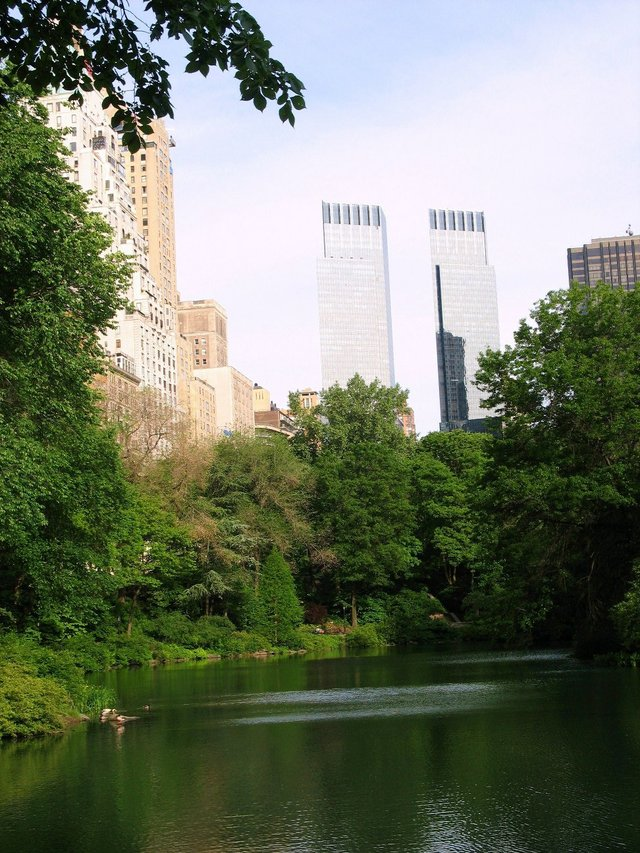 The Pond:  Enriched by Man Made Structures