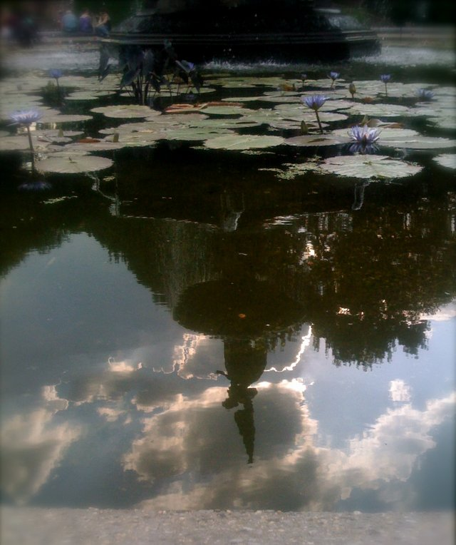 Retroflections