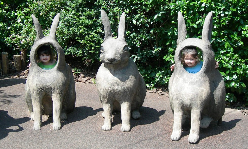 Twins as Bunnies