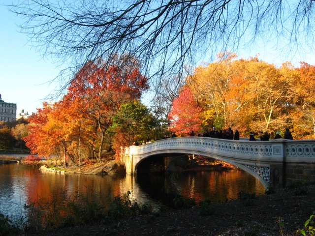 Fiery Autumn at Bow Bridge