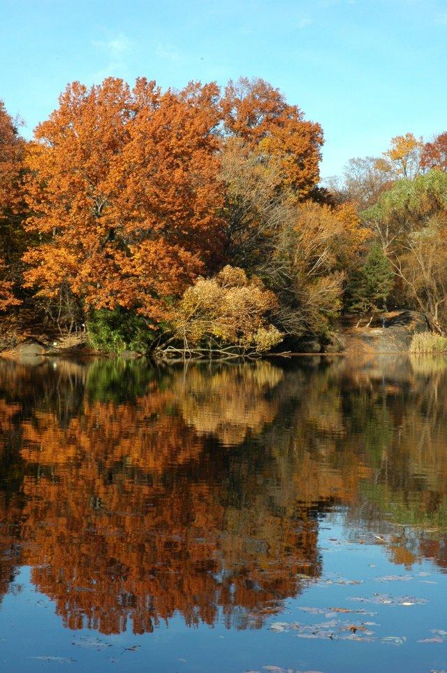 Autumn Mirror 2