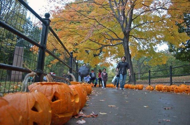 Pumpkin Festival Walk
