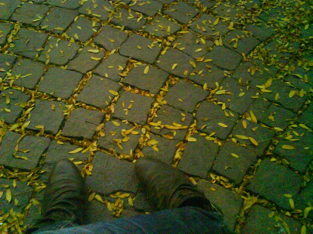 autumn lays at your feet