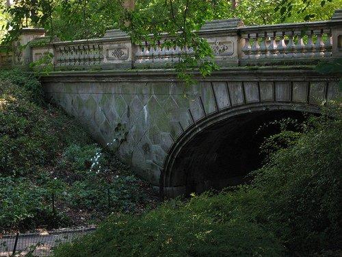 Bridge and Trails - Central Park