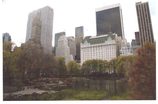 Plaza Hotel & Duck Pond