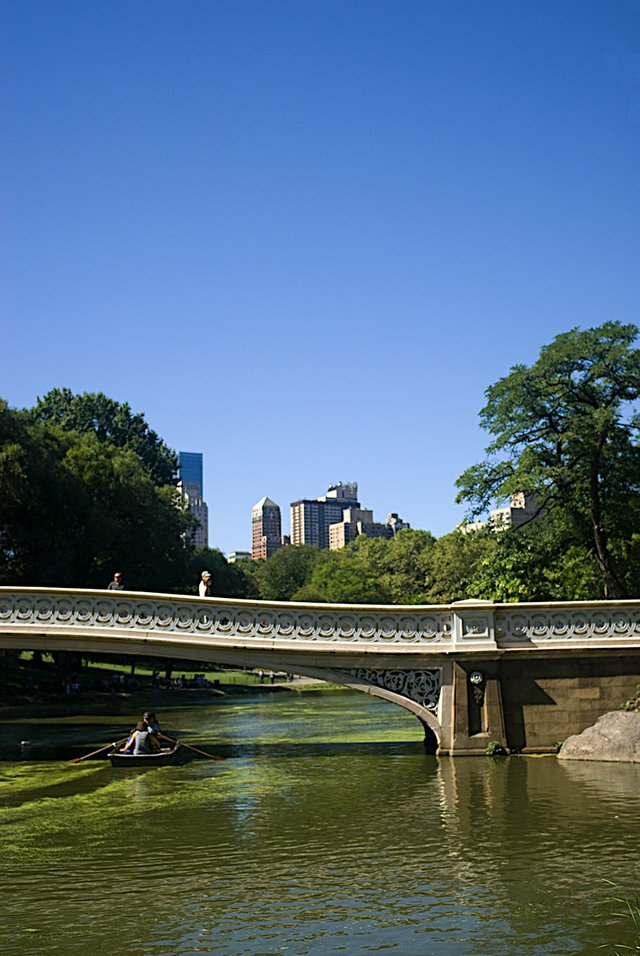 Bow Bridge Row