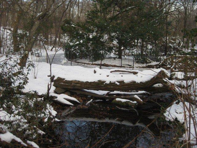 Ramble with snow
