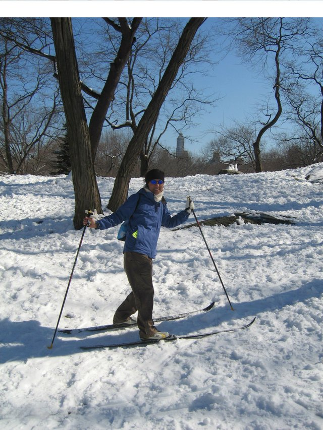 Cross Country Skiing at Central Park
