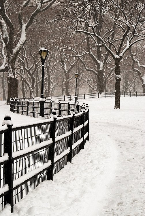 Walkway in winter