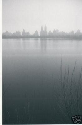 Reservoir Mist