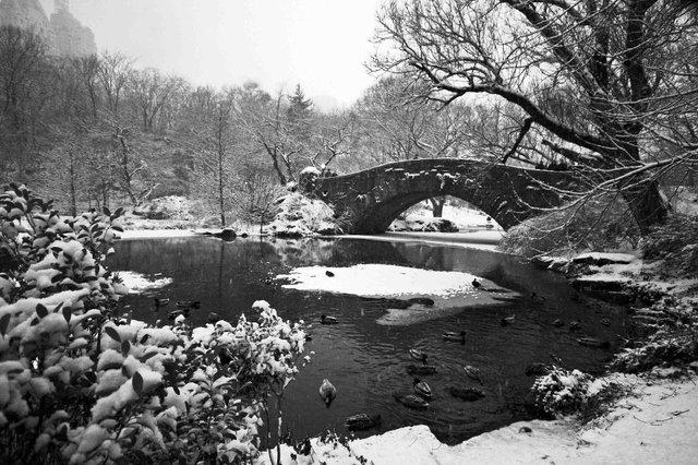 Gapstow Bridge & The Pond