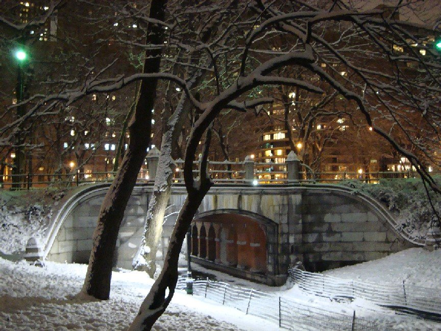 Snowy CPS Bridge