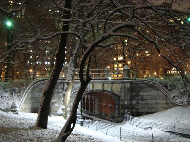 Snowy CPS Bridge