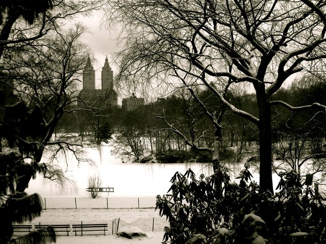 Central Park Winter Season