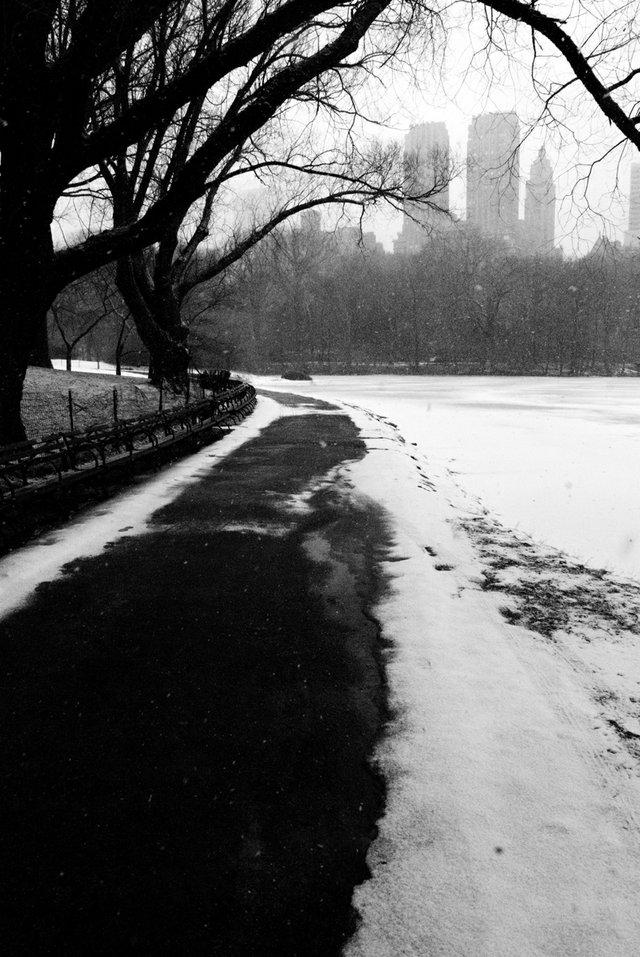 Lake 1 — Winter