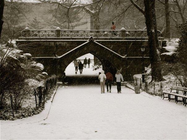 Central Park - snowing