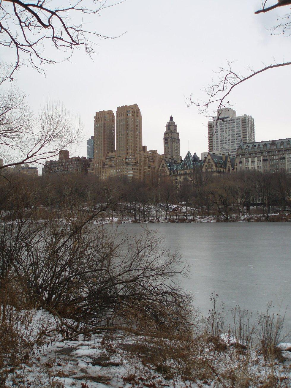 Frozen Lake in the Bleek Mid Winter