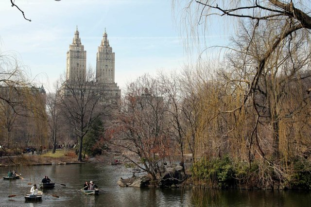 Saturday Morning in Central Park