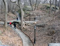 Early Spring Ramblers in the Ramble
