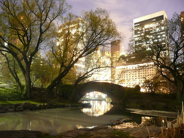 Gapstow Bridge and skyline
