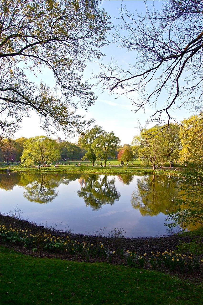 Photo entry: Spring Lake Reflection