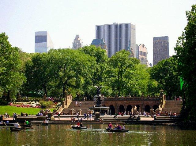 lake with rowboats