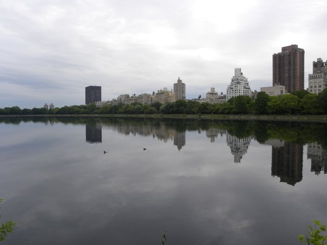 The Reservoir