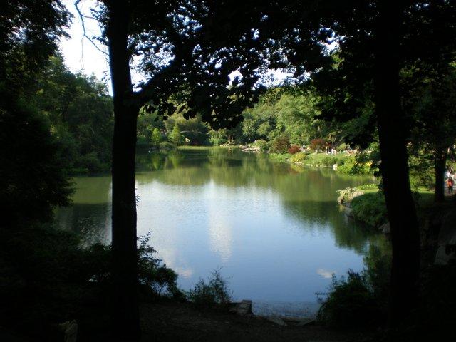 central-park-pond.jpe
