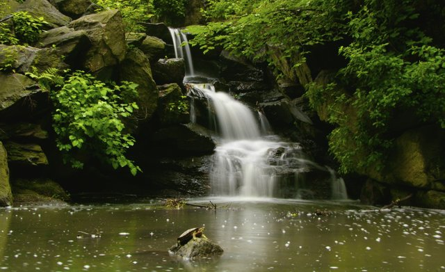 Waterfall at Glen Span Arch