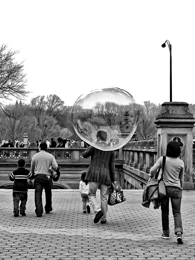 A Bubble in Central Park