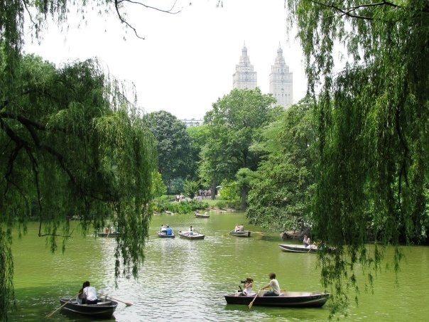 * Romantic view of Central Park *