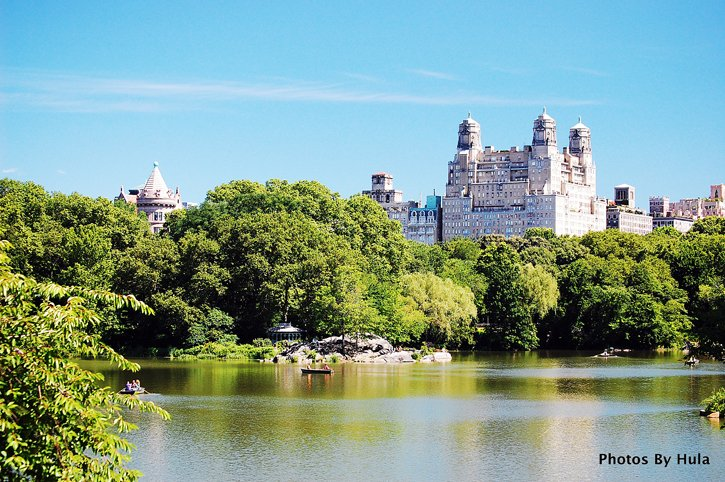 A Central Park Summer