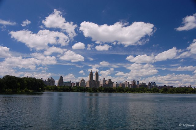 Skyline from Central Park
