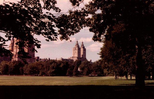Autumn in NY - 1981