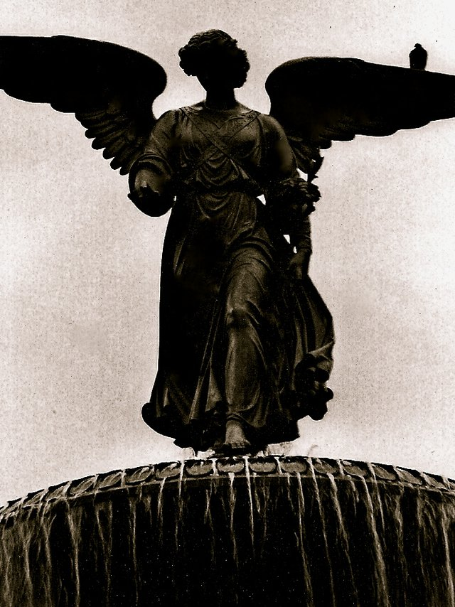 Bethesda's Angel