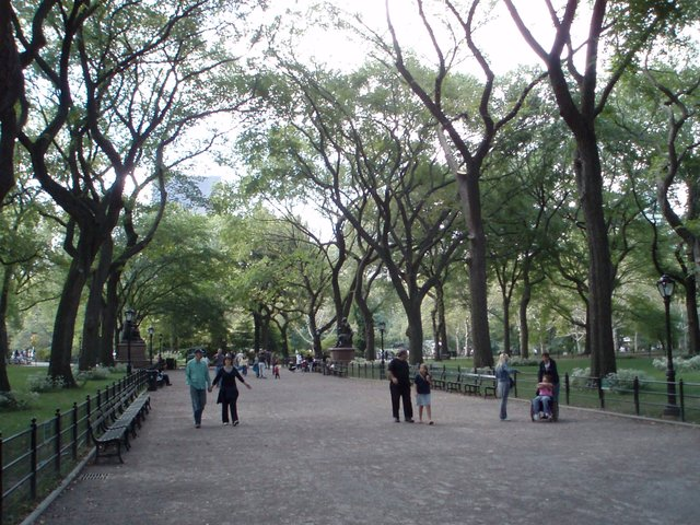 The Mall - Central Park