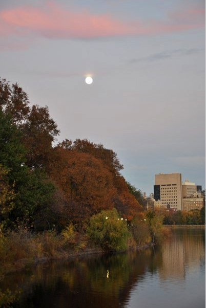 Fall colors and the moon