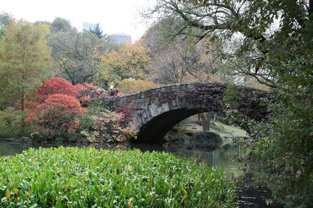 Colors of Gapstow Bridge