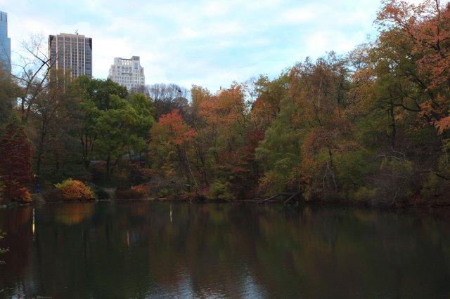 Facing Central Park South
