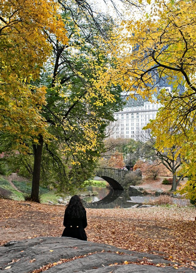 A Fall Day in Central Park
